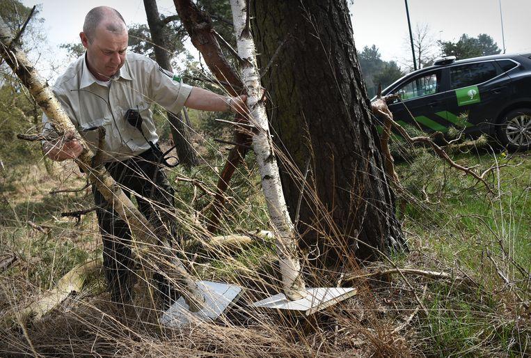 Boswachter Sjaak Smits vindt gedumpt afval achter een boom. Beeld Marcel van den Bergh