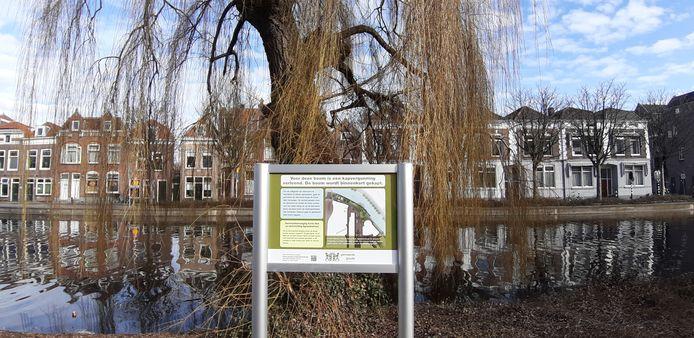 Bij een treurwilg aan de Agnietenstraat in Gouda staat een bord waarop wordt uitgelegd waarom de boom moet worden gekapt.