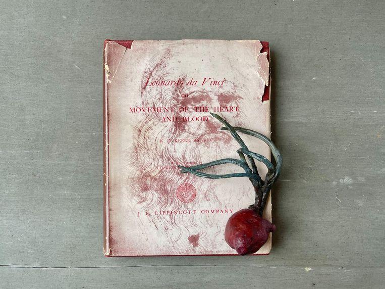 Een ontsproten ui met daarrond een hart van klei.Sofie Mullers kunstproject 'Movement of the heart' is genoemd naar een boek van Leonardo da Vinci.  Beeld Sofie Muller