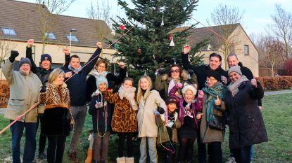Mooiste kerstboom staat in Wyckmansveld