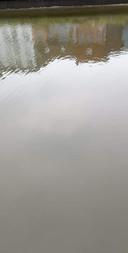 Doordat het water er heel laag stond, merkte een wandelaar de contouren van een wagen op in de Damse Vaart. Wie goed kijkt, kan de wagen zien liggen.