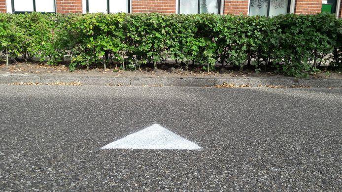 Witte driehoekjes hebben Neede in hun greep. Waar verwijzen ze naar, en wie let daarop? En wat als je er géén voor je deur hebt?