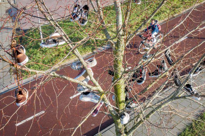 Eén van de boompjes bij de skatebaan hangt vol versleten sneakers.