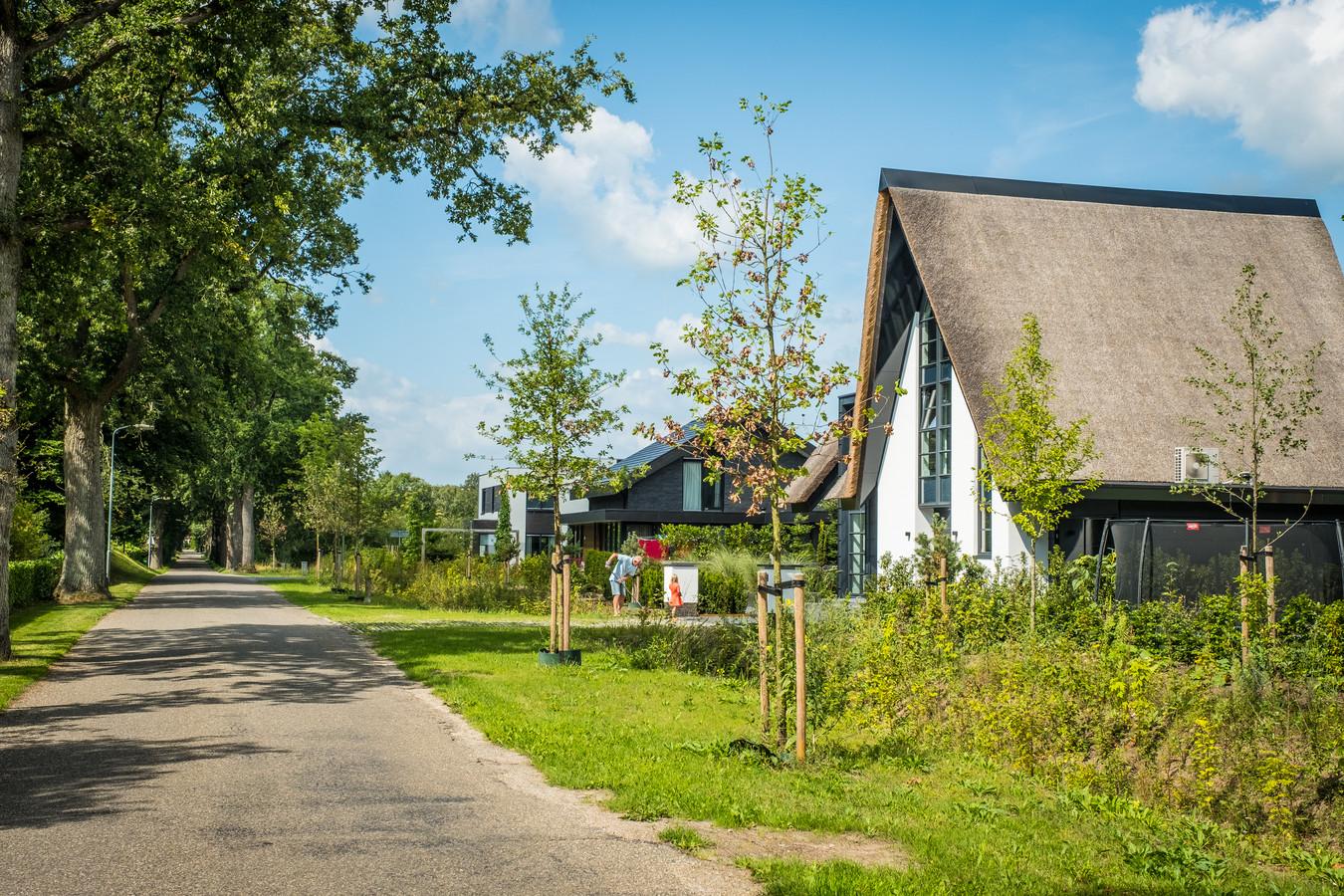 Aan de Konijnenbergerweg waren monumentale eiken gekapt. Daar zijn nu bomen voor teruggeplant. De groene zone rondom het nieuwbouwproject is nog niet volledig gerealiseerd.