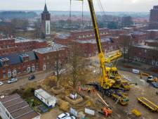 Linden in Kruidenbuurt Eindhoven op hun nieuwe plek gezet