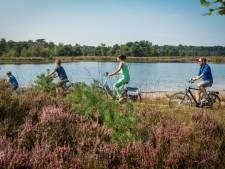 Van betoverende fruitgaarden tot kastelenpracht: 6 keer fietsen in de Antwerpse rand