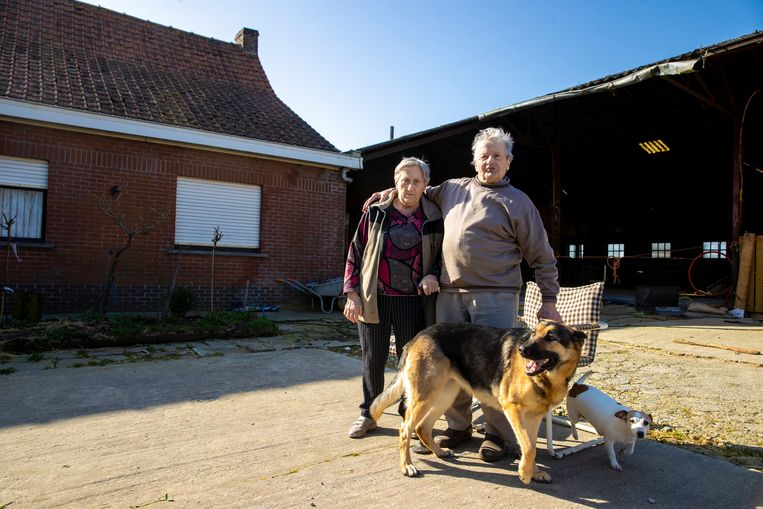 Elza Jonckheere (82) en Marc D'Haese (82). Beeld Jan De Meuleneir / Photo News