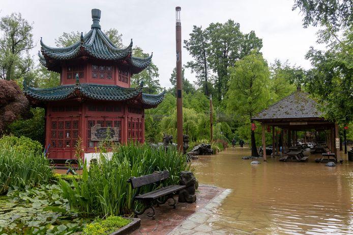 Inondations à Pairi Daiza.
