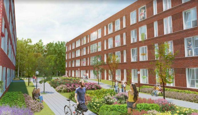 Impressie van de tijdelijke woningen die een projectontwikkelaar in Arnhem-Zuid zou willen bouwen.