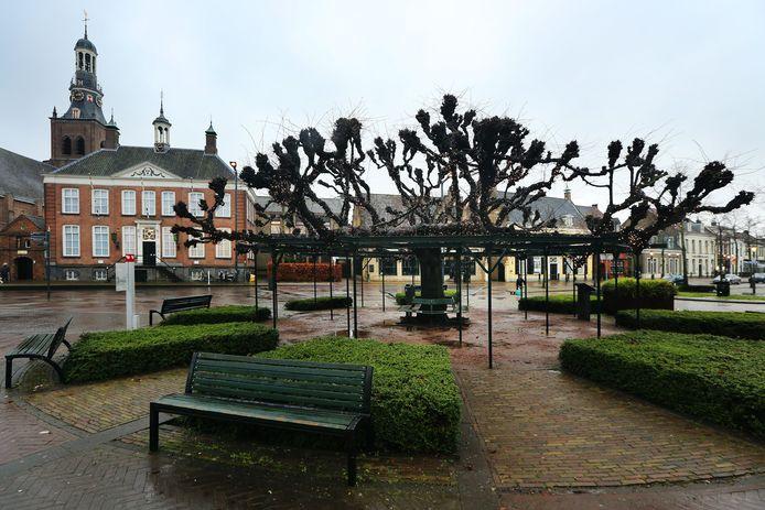 20210202 - Etten-Leur - De Moeierboom, een grootbladige linde (Tilia platyphyllos) op de Markt in Etten-Leur is verkozen tot de mooiste boom van Nederland en doet een gooi naar de titel 'mooiste boom van Europa'.