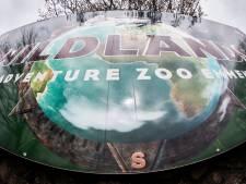 Olifantje geboren bij Wildlands Emmen