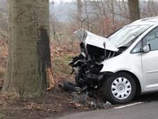Man gewond na botsing met auto op boom in Lettele