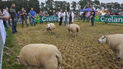 56ste editie van Heistse Landbouwdag is laatste volgens huidig concept