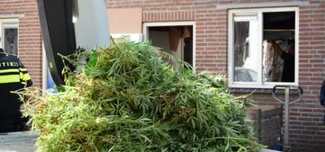 Politie valt woning in Huissen binnen vanwege hennepplantage