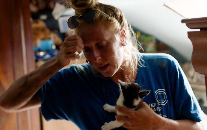Deze moedige meisjes redden nestje kittens in Pepinster.