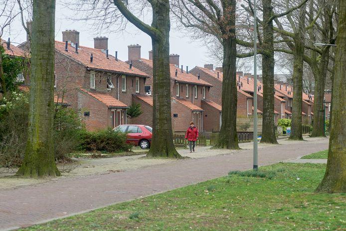 De duplexwoningen aan de Zwaluwstraat(foto) en Spoorlaan in de Schadewijk worden gesloopt.