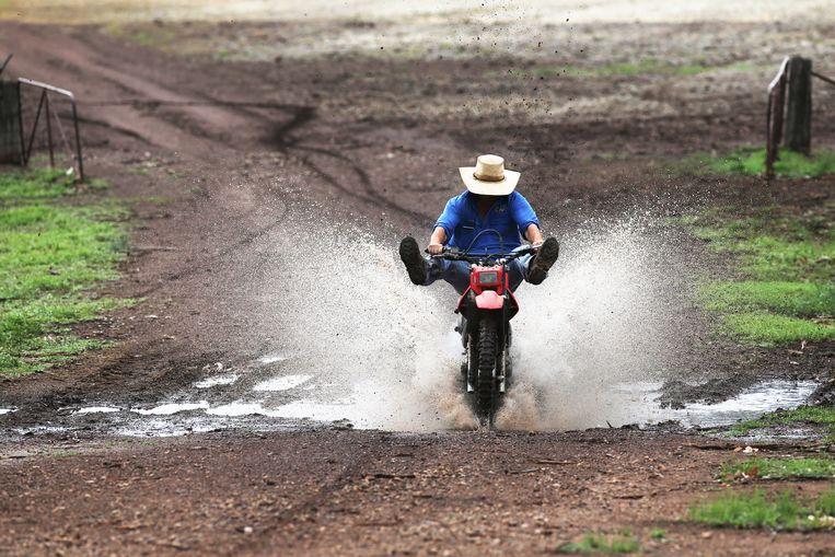 Het regenwater wordt Australië, eerder geteisterd door bosbranden, met groot enthousiasme verwelkomd. Beeld EPA