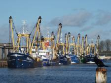 Visprijzen herstellen zich iets, Europese Unie komt met steunpakket