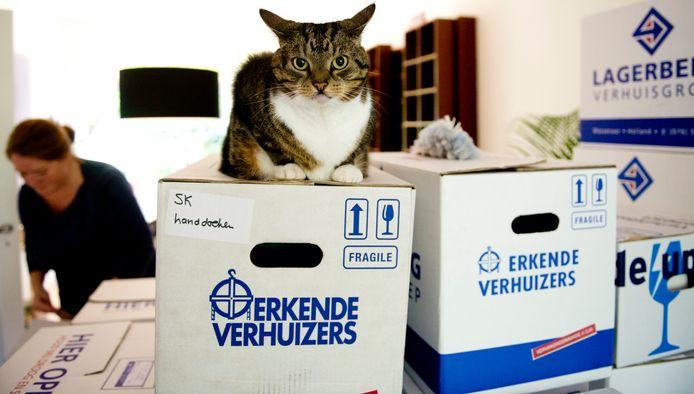 Veel Etten-Leurenaren die dolgraag willen verhuizen, kunnen geen betaalbaar huis vinden. Voor de ruim 142 woningen die bij Kloostervelden moeten komen, meldden zich onlangs bijvoorbeeld dik 2.000 gegadigden.