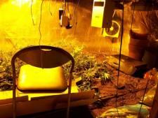 Woning in Tollebeek op slot na vondst hennepplantage
