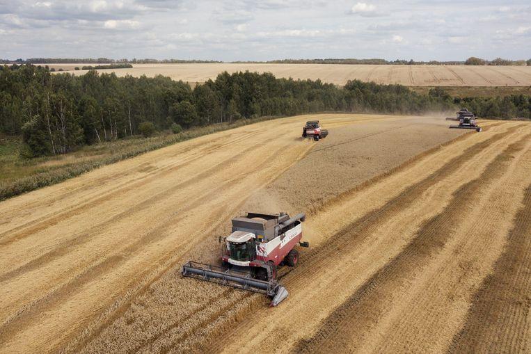 Kravtsov overweegt zijn gouden graanrijkje in de provincie Toela alweer uit te breiden. Beeld Arthur Bondar