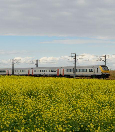 Drie talen in één treinreis: van onverstaanbaar Vlaams via Frans naar Duits
