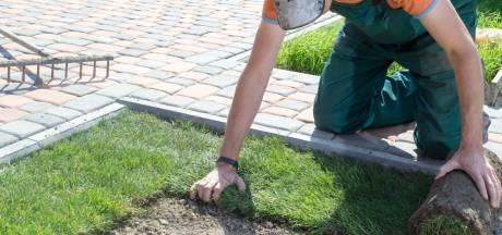 Hét ideale moment om het gazon in de tuin aan te pakken