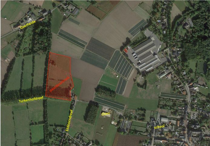 De paardenkliniek zou komen in de Turkenhofdreef in Liezele.