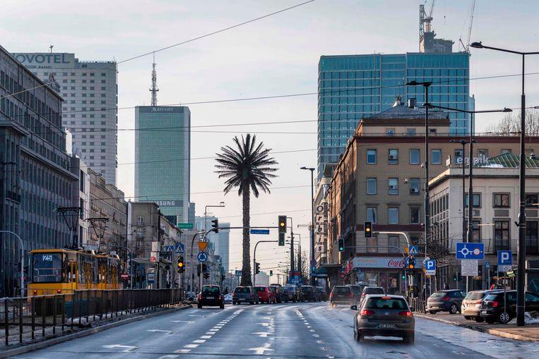 Bij Warschau denk je niet onmiddelijk aan palmbomen, maar toch staat-ie daar, een flink exemplaar, op de Aleje Jerozolimskie in het centrum van de Poolse hoofdstad. De boom is onderdeel van een kunstinstallatie van de Poolse kunstenares Joanna Rajkowska genaamd 'Greetings From Jerusalem Avenue'.  Beeld AFP