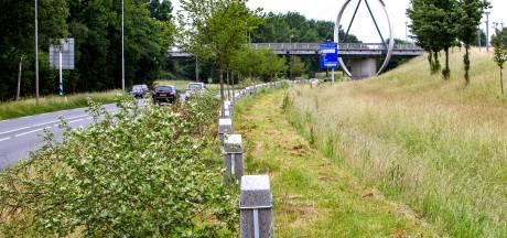 Wanneer sloeg de kever toe bij het Witte Lint in Zutphen?