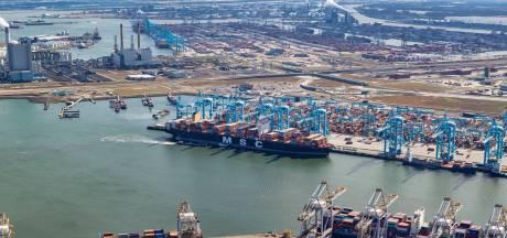 Het lossen van een megaschip met containers duurt wel dertig uur: 'Al die tijd kan er geen ander schip bij'