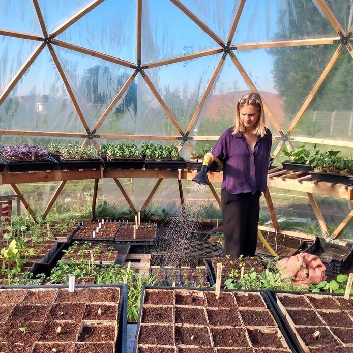 Heleen Calcoen kweekt kruiden en groenteplanten waar vroeger het Ottenstadion stond.