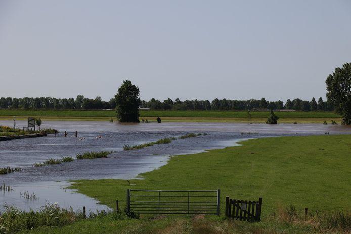De uiterwaarden langs de Maas lopen vol.