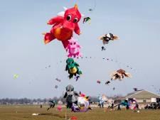 Dit weekend internationaal vliegerfestival in Vroomshoop: 'Echte sport'