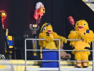 Sensatie op het veld, liefde tussen mascottes in de tribune van Stayen