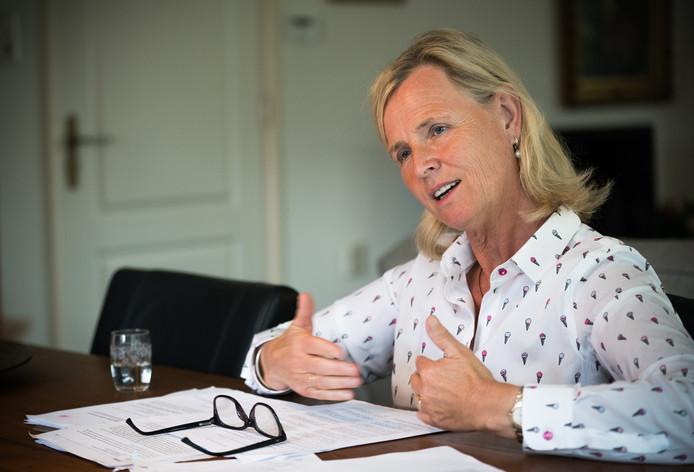 Annie Schreijer-Pierik, Europarlementariër
