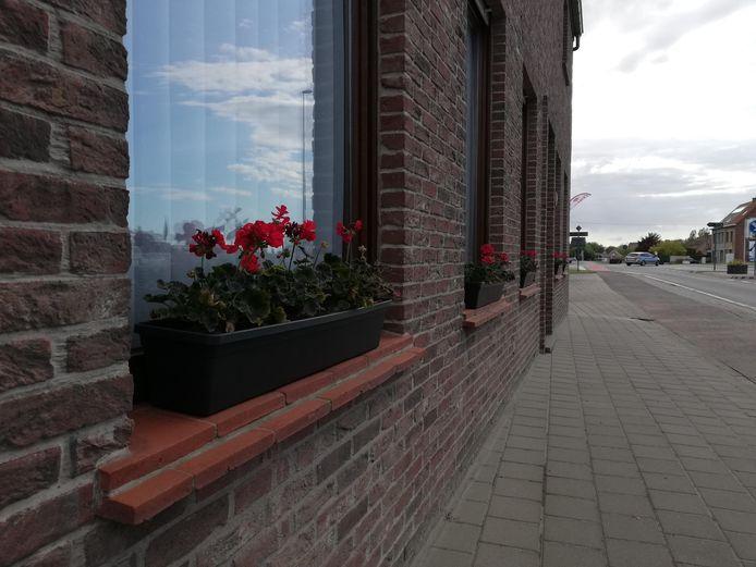 Vzw Zonnebloem organiseert een bloemenactie om straatbeeld op te fleuren.