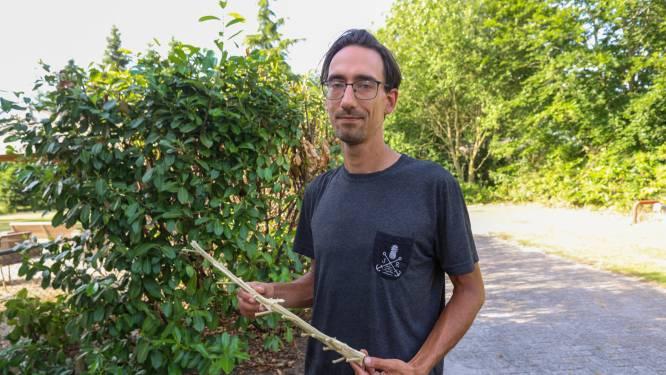 Wietplant kostte Robin zijn huis en zijn baan; 'Het enige wat ik nog wil is weg uit Nederland'