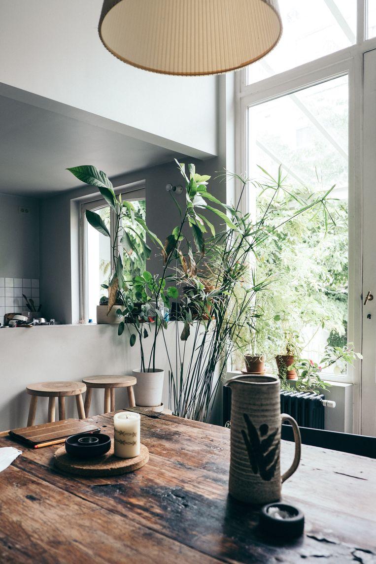 Natuur troef in de leefkeuken die paalt aan de veranda: veel planten en doorleefd hout. Beeld null