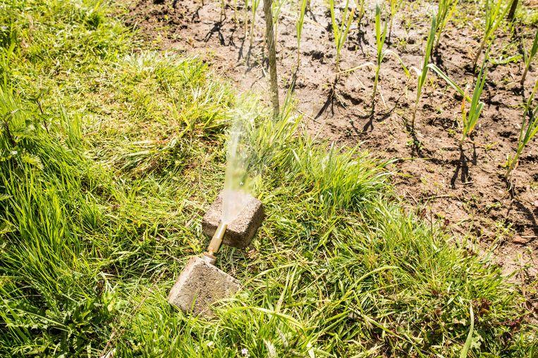 De Wageningen Student Farm. 'In mei gaat op de campus de boerderij van de toekomst open. Daarin is ecologie leidend en techniek dienend.' Beeld Jan Mulders