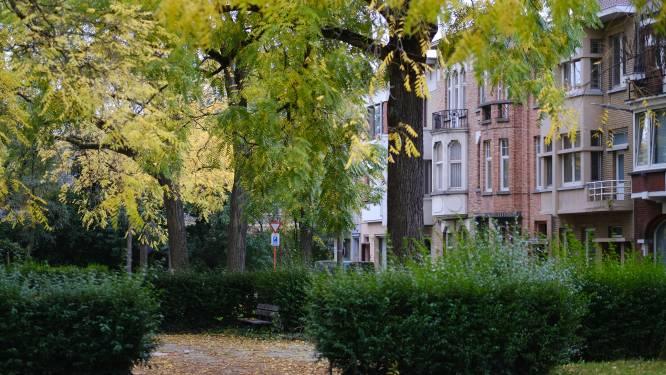 """Op huizenjacht in… Kortrijkse Sint-Janswijk en omgeving: """"Rustige en groene straten, vol prachtige architectuur"""""""