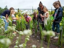 Onderwijs van buiten naar binnen: eerste schoolweek van De Nieuwe Linde in Oisterwijk zit erop
