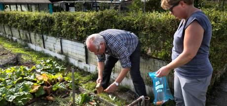 In Helmond meer ziekten als gevolg van blootstelling aan PFAS? GroenLinks wil onderzoek