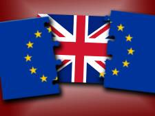Hoe de Britse upperclass de brexit aan het gewone volk verkocht