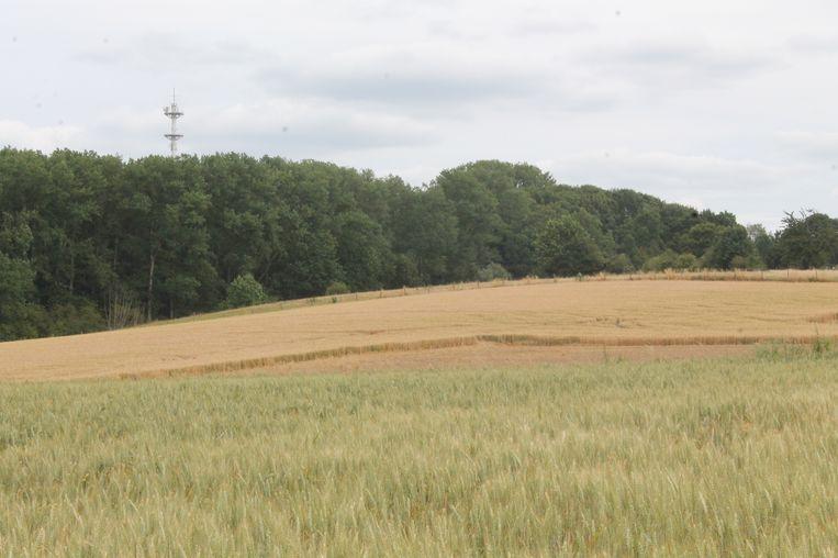 Natuurpunt vindt de ruilverkaveling een onverantwoord risico voor het Bruegels landschap van Gooik.