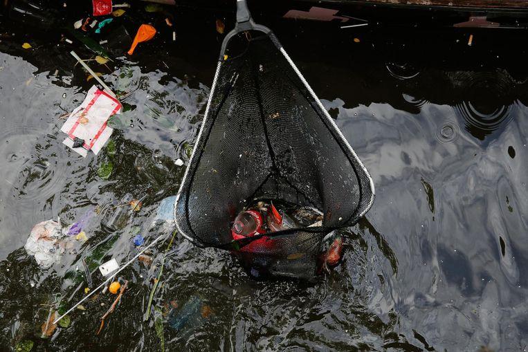 Vrijwilligers van Plastic Whale ruimen in de grachten het afval op dat door de feestvierders van de Canal Parade werd achtergelaten Beeld ANP