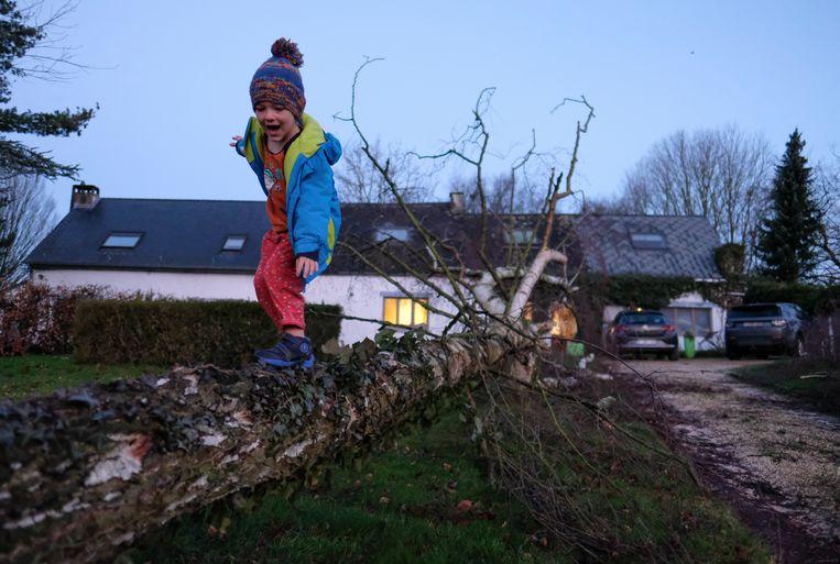 Een kind speelt bij een omgewaaide boom in Namen. Beeld EPA