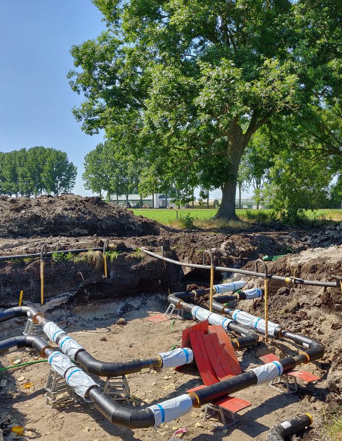 Aan de Zwagersweg worden leidingen aangelegd voor het warmtenet in de Koekoekspolder