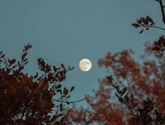 """Het is morgen volle maan en die beïnvloedt onze slaap. Maar hoe? """"Het is een feit dat er tijdens de volle maan bizarre dingen gebeuren"""""""