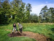 Het stuk natuur dat Bert Lemmens ooit koesterde, is nu een Gebeurtenissenbos voor heel Laarbeek